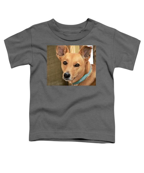 Dog - Cookie One Toddler T-Shirt