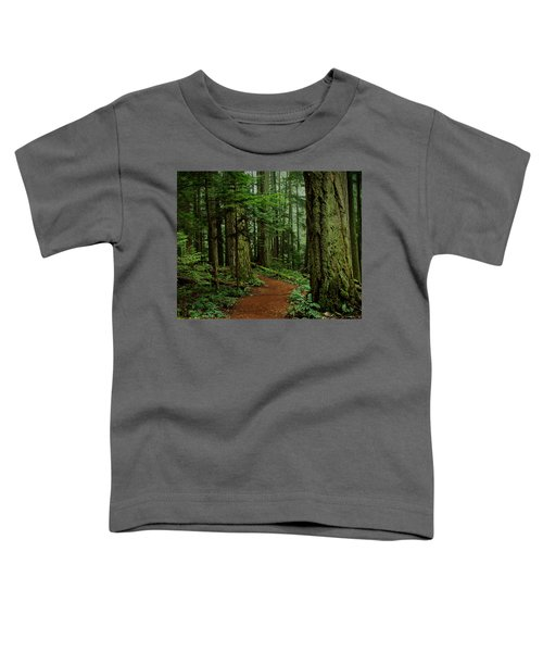 Mystical Path Toddler T-Shirt