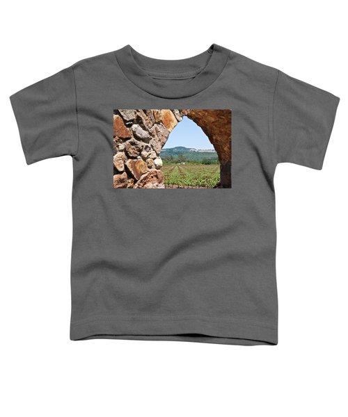 Napa Vineyard Toddler T-Shirt