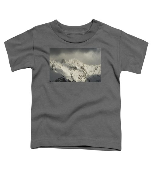 North Cascades Mountains In Winter Toddler T-Shirt by Yulia Kazansky