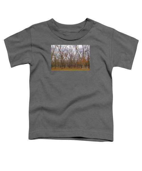 North Florida Orchard In Fall Toddler T-Shirt