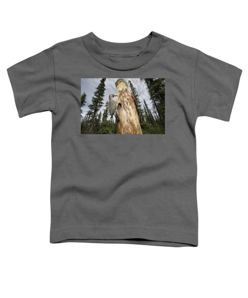 Northern Flicker At Nest Cavity Toddler T-Shirt