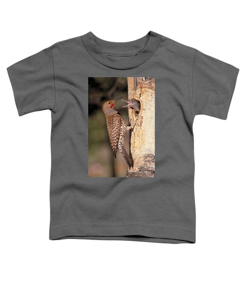Northern Flicker At Nest Toddler T-Shirt