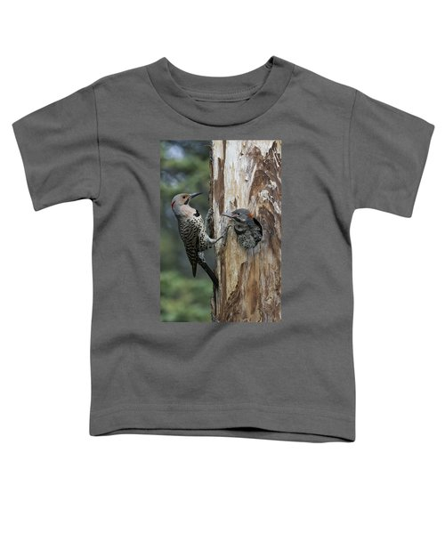 Northern Flicker Parent At Nest Cavity Toddler T-Shirt
