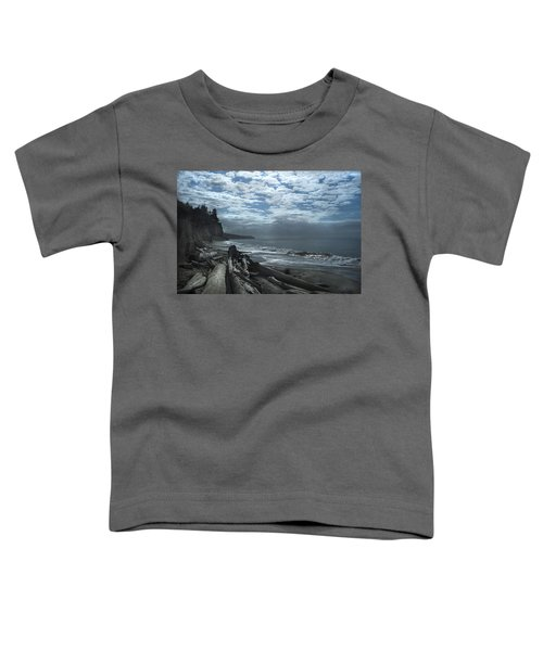 Ocean Beach Pacific Northwest Toddler T-Shirt