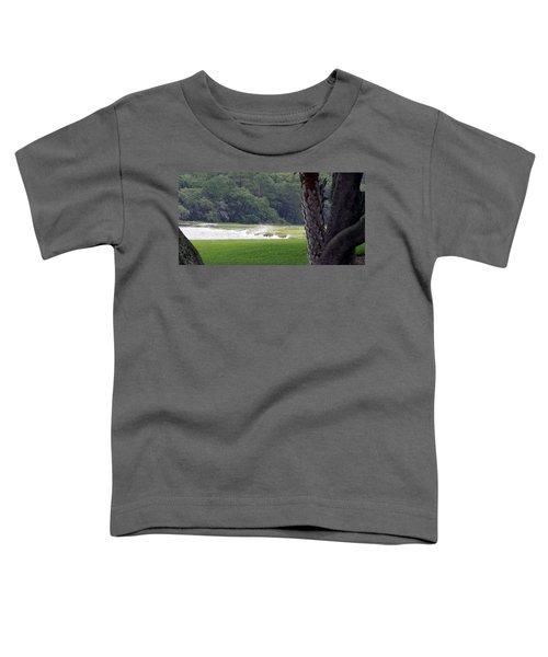 Ocean Spray At Hilton Head Island Toddler T-Shirt