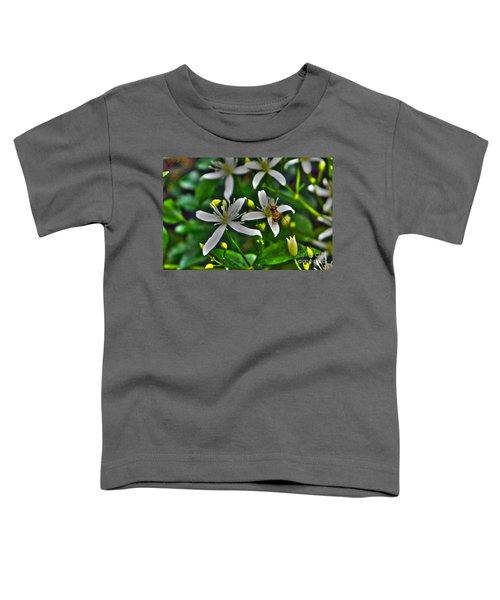 Odd Beauty Toddler T-Shirt