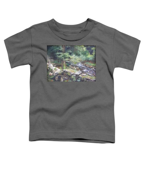 Old Mill Steam II Toddler T-Shirt