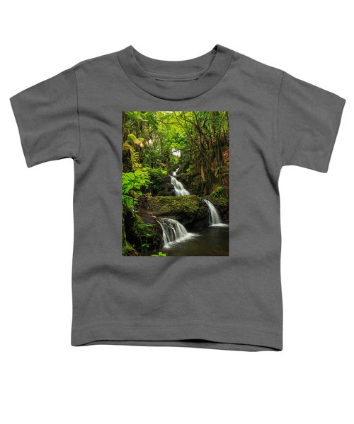 Onomea Falls Toddler T-Shirt