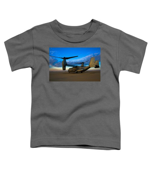 Osprey Sunrise Series 1 Of 4 Toddler T-Shirt