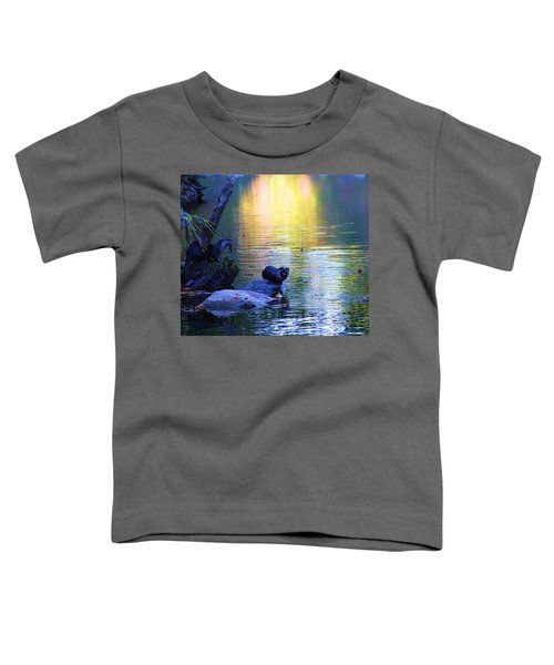 Otter Family Toddler T-Shirt by Dan Sproul