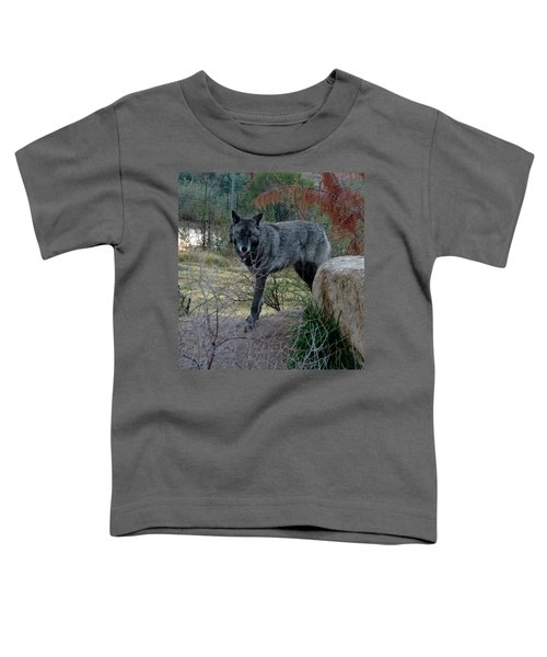 Out Of Africa Black Wolf Toddler T-Shirt