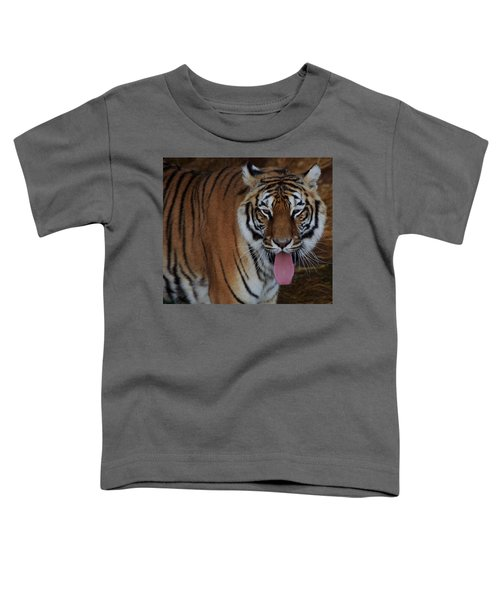 Out Of Africa  Tiger 2 Toddler T-Shirt
