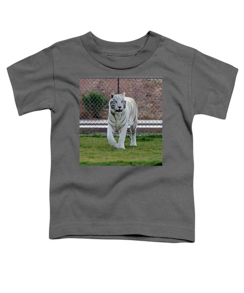 Out Of Africa White Tiger Toddler T-Shirt