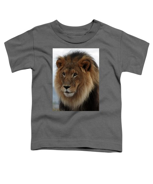 Out Ofafrica  Lion 4 Toddler T-Shirt