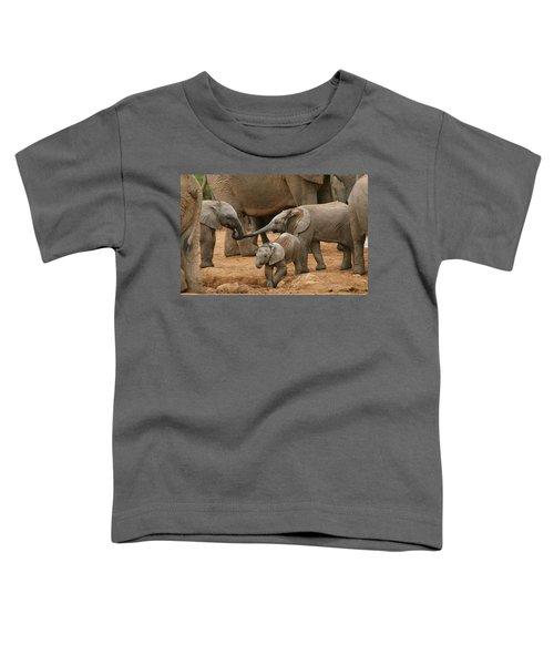 Pachyderm Pals Toddler T-Shirt