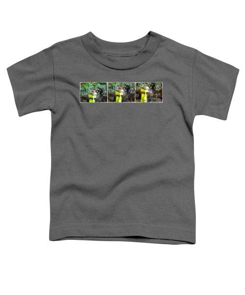 Painted Bullfinch Trio Toddler T-Shirt