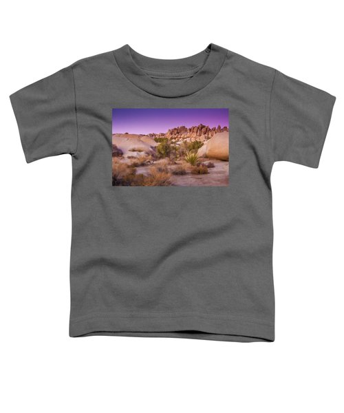 Painterly Desert Toddler T-Shirt