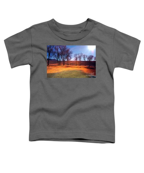 Park In Mcgill Near Ely Nv In The Evening Hours Toddler T-Shirt
