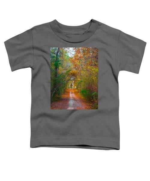 Path To The Fairies Toddler T-Shirt