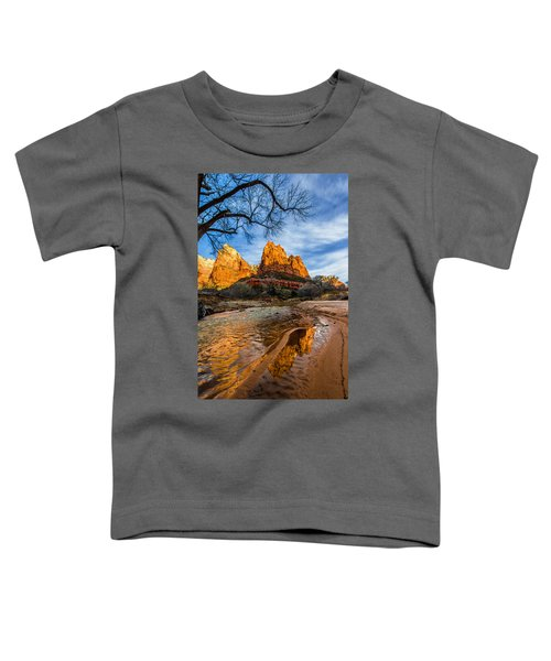Patriarchs Of Zion Toddler T-Shirt