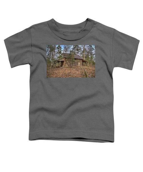 Peak Ruins-2 Toddler T-Shirt