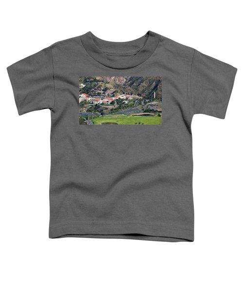 Pepperdine University On A Hill Toddler T-Shirt