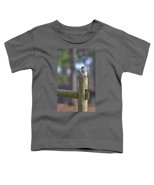 Perched Toddler T-Shirt