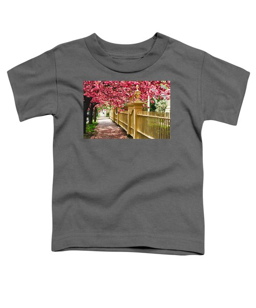 Perfect Time For A Spring Walk Toddler T-Shirt