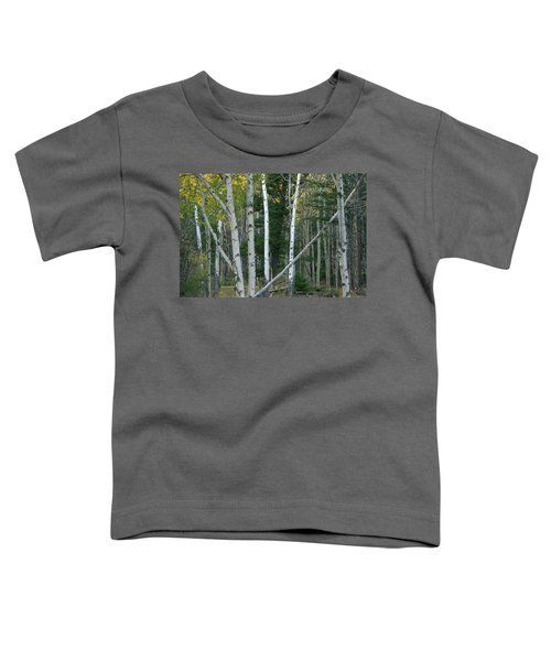 Perfection In Nature Toddler T-Shirt