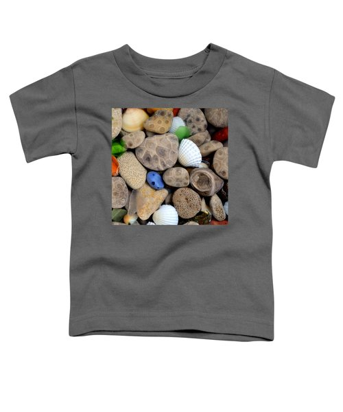 Petoskey Stones V Toddler T-Shirt
