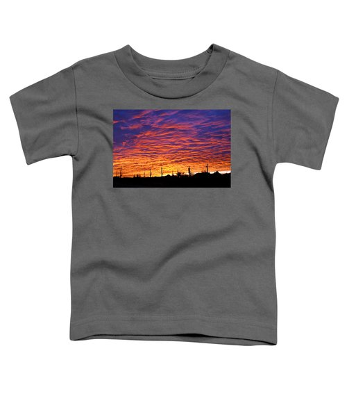 Phoenix Sunrise Toddler T-Shirt