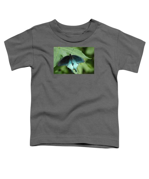 Pipevine Swallowtail Toddler T-Shirt