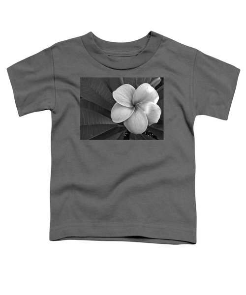 Plumeria With Raindrops Toddler T-Shirt