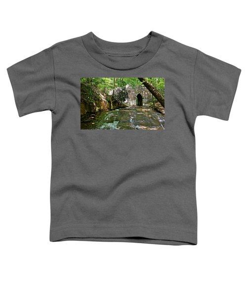 Poinsett Bridge Toddler T-Shirt