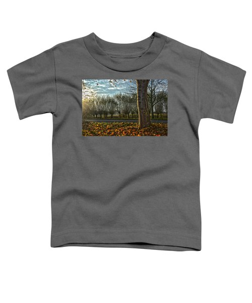 Pollard Willows In Rotterdam Toddler T-Shirt
