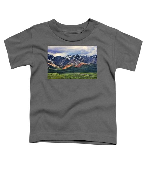 Polychrome Toddler T-Shirt