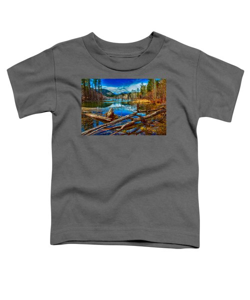 Pondering A Mountain Toddler T-Shirt