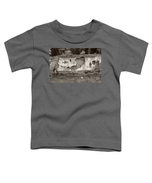 Porta Romana In Sepia Toddler T-Shirt