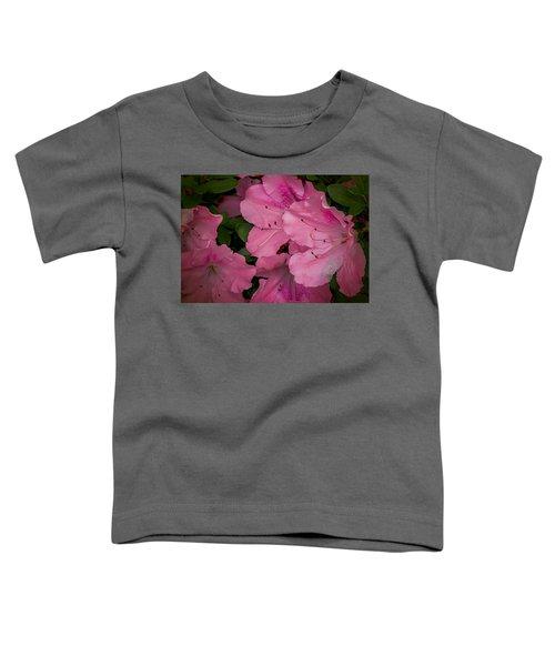 Premium Pink Toddler T-Shirt