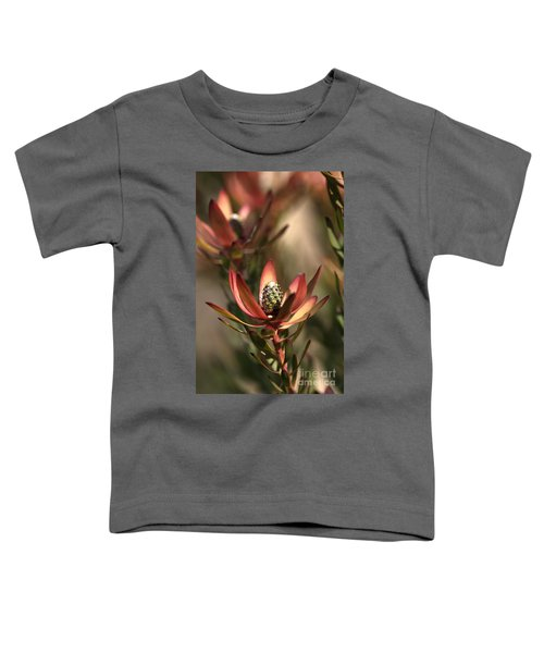 Protea  Toddler T-Shirt