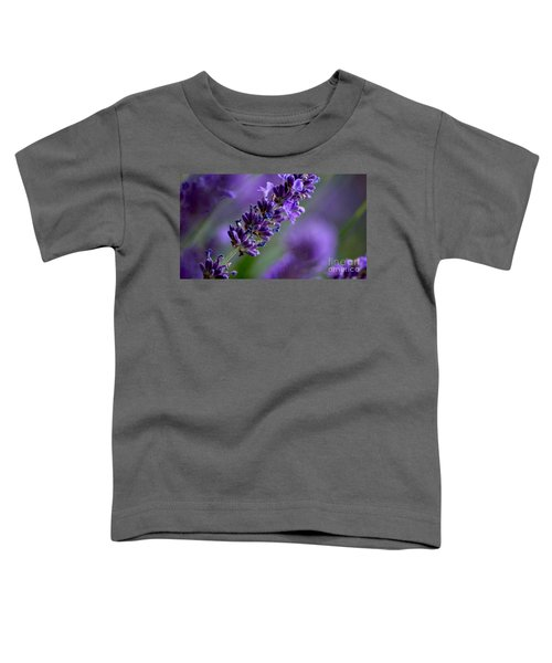 Purple Nature - Lavender Lavandula Toddler T-Shirt