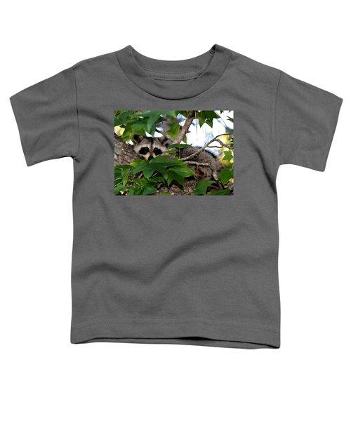 Raccoon Eyes Toddler T-Shirt