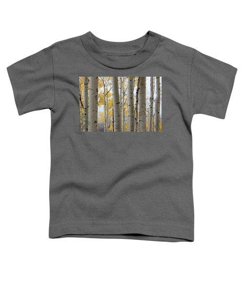 Rainy Day Aspen  Toddler T-Shirt