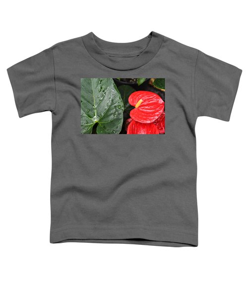 Red Anthurium Flower Toddler T-Shirt