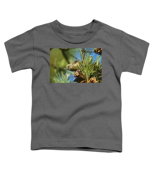 Red Crossbill Eating Cone Seeds Toddler T-Shirt