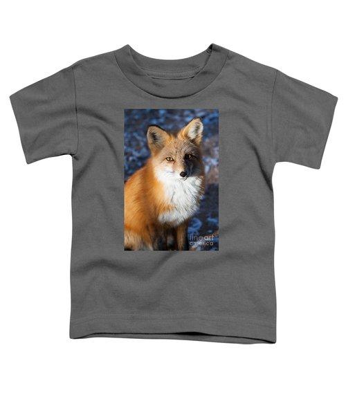 Red Fox Standing Toddler T-Shirt