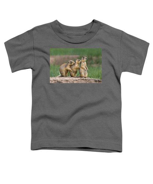 Relaxing Utah Prairie Dogs Cynomys Parvidens Wild Utah Toddler T-Shirt