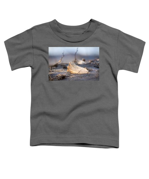 Remnants Of Icarus Toddler T-Shirt by Bill Pevlor