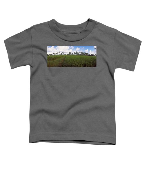 Rice Field, Bali, Indonesia Toddler T-Shirt